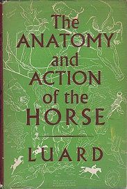 Anatomy and Action of the Horse, TheLuard, Lowes D., Illust. by: Lowes D.  Luard - Product Image