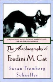 Autobiography of Foudini M. Catby: Schaeffer, Susan Fromberg - Product Image