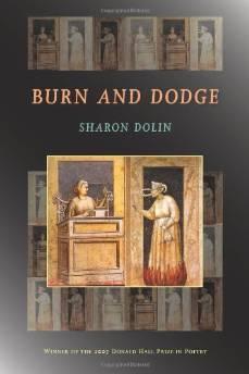 BURN AND DODGEDolin, Sharon - Product Image
