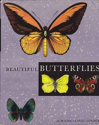 Beautiful ButterfliesMoucha, J., Illust. by: F.   Prochazka - Product Image