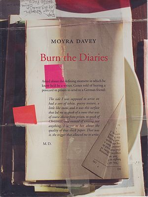 Burn the DiariesDavey, Moyra/Alison Strayer - Product Image