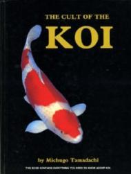 Cult of the Koi Hbby: Tamadachi, Michugo - Product Image