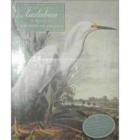 John James Audubon: The Watercolors for the Birds of America,by: Blaugrund (ed), Annette, Theodore E. Stebbens, Jr.,  - Product Image