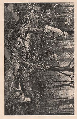 "ORIG B&W SPORTING PRINT/ ""RUFFED GROUSE SHOOTING - A CLEAN MISS AND HIS EYE WIPED""illustrator- A.B.  Frost - Product Image"