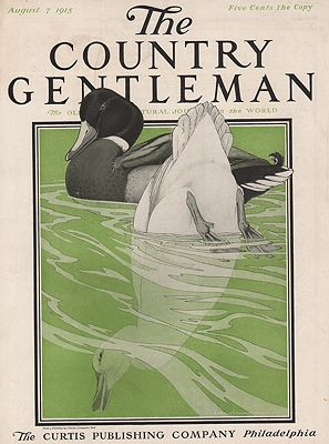 ORIG VINTAGE MAGAZINE COVER/ THE COUNTRY GENTLEMAN - AUGUST 7 1915illustrator- Charles Livingston  Bull - Product Image
