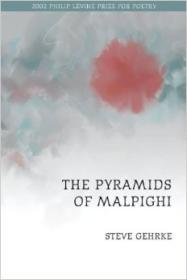Pyramids of Malpighi, The by: Gehrke, Steve - Product Image