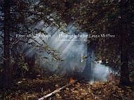 River of No Return: Photographs by Laura McPheeMcPhee, Laura - Product Image