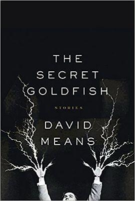 Secret Goldfish, TheMeans, David - Product Image